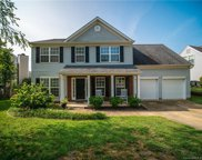 2921 Huckleberry Hill  Drive, Fort Mill image