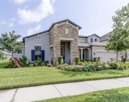 19429 Whispering Brook Drive, Tampa image