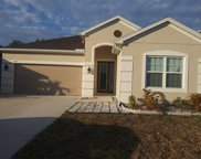 8511 Grand Aspen Way, Riverview image