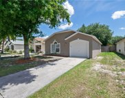 1048 Vista Palma Way, Orlando image
