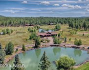 9556 Sierra Springs Lane, Pinetop image