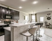 2305 Simmental, Fort Worth image