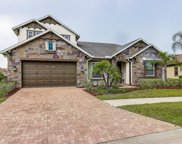 13234 Fawn Lily Drive, Riverview image
