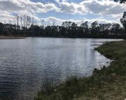 1837 Wood Stork Dr., Conway image