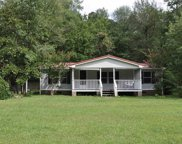 5453 Dongola Hwy., Conway image