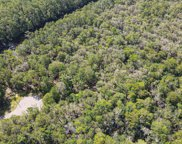 Lot 16 Black Water Cove, Conway image