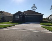 2380 White Poppy Drive, Kissimmee image