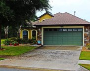 8997 Bridgeport Bay Circle, Mount Dora image