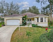 124 Costa Mesa Drive, The Villages image