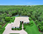 10528 Curry Palm Ln, Fort Myers image
