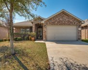 2716 Triangle Leaf Drive, Fort Worth image