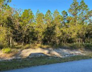 Sw Timberlake Road, Dunnellon image