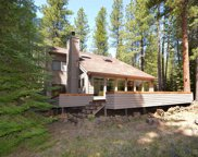 70436 Bowdenii, Black Butte Ranch image