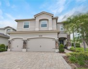 30271 Southern Wood Court, Wesley Chapel image