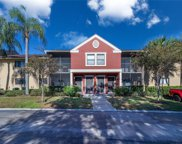 5642 Baywater Drive Unit 5642, Tampa image