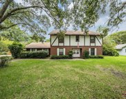 4507 Old Orchard Drive, Tampa image