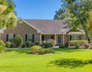 1053 Yellow Jasmine Dr., Longs image