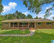 2865 Red Hill School Road, Hayden image