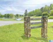 525 Anderson Mtn Drive Unit 25 6 7, Odenville image