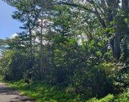 N KUMU ST, PAHOA image