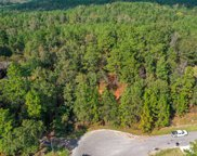 1621 Timber  Trail, Deatsville image