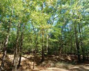 Old Seven Islands Rd Unit Tract 2, Buckhead image