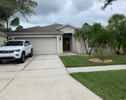 7034 Monarch Park Drive, Apollo Beach image