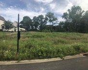 4401 St Ives Ct. LOT 335, Arrington image