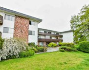 910 Fifth Avenue Unit 304, New Westminster image