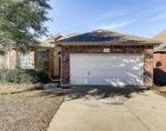 14121 Cochise Drive, Fort Worth image