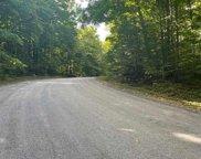 Hilltop Drive, Bellaire image