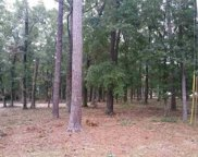 TBD Lot Y Emerson Loop, Pawleys Island image
