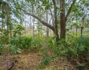 41 Wintercress Road, Bluffton image