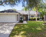 11417 Crescent Pines Boulevard, Clermont image