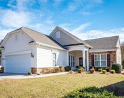 51021  Arrieta Court, Indian Land image