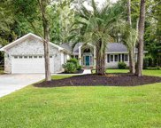 188 Dove Ct., Myrtle Beach image