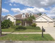 11903 Middlebury Drive, Tampa image