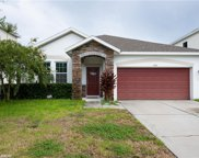 7724 Tangle Rush Drive, Gibsonton image
