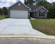 59 Palmetto Green Dr., Longs image