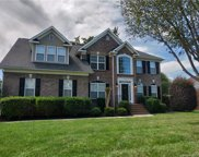 4502  Shadow Moss Circle, Fort Mill image