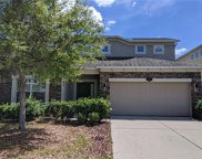 10651 Pictorial Park Drive, Tampa image