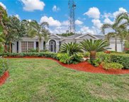 6917 Mill Run Cir, Naples image