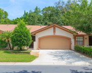 3953 Shoreside Circle, Tampa image