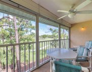 5955 Bloomfield Cir Unit A305, Naples image