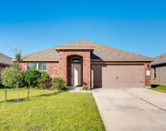 3026 Dripping Springs Court, Katy image