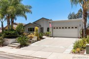 11730     Negley Dr, Scripps Ranch image