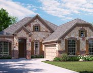 263 Pinyon Lane, Frisco image