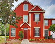 10580 Windsor Lake Court, Tampa image