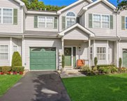 149 Willow Wood  Drive Unit #N/A, Oakdale image