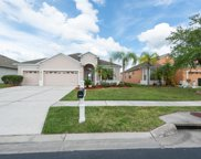 7130 Maysville Court, Wesley Chapel image